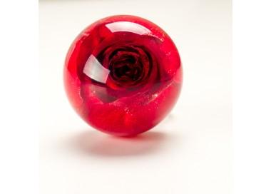 Pierścionek z żywicy z prawdziwą czerwoną różą.